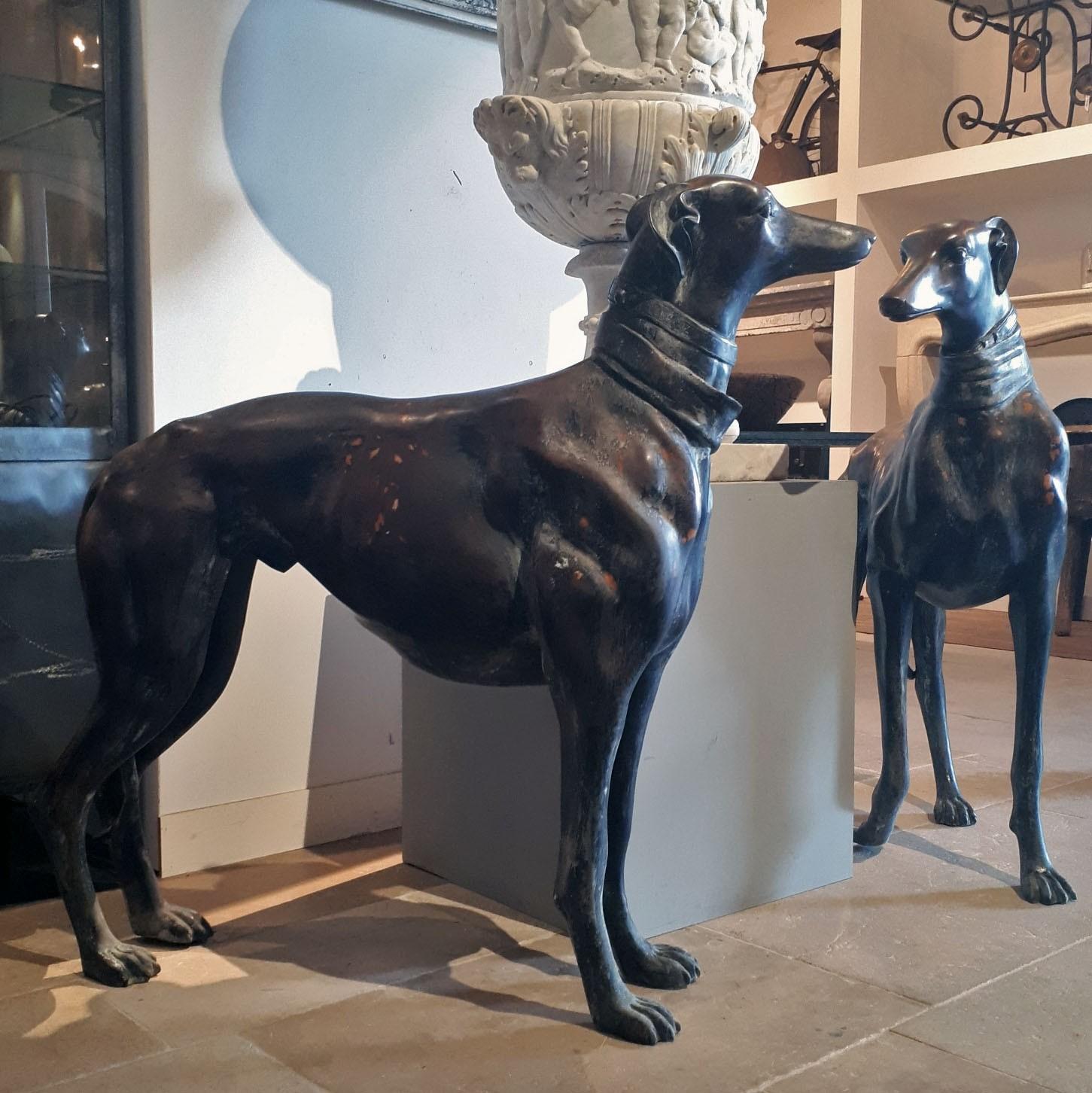 Stel grote bronzen hazewindhonden