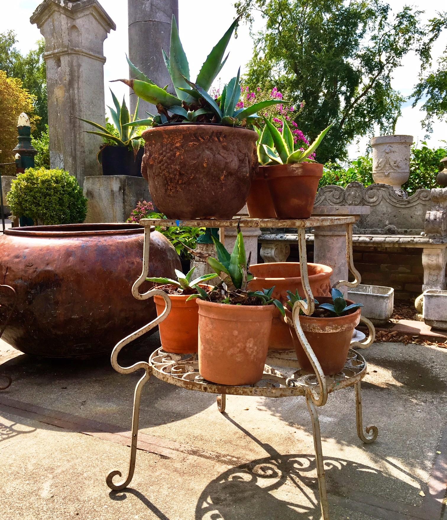 Charmant oud plantenrekje