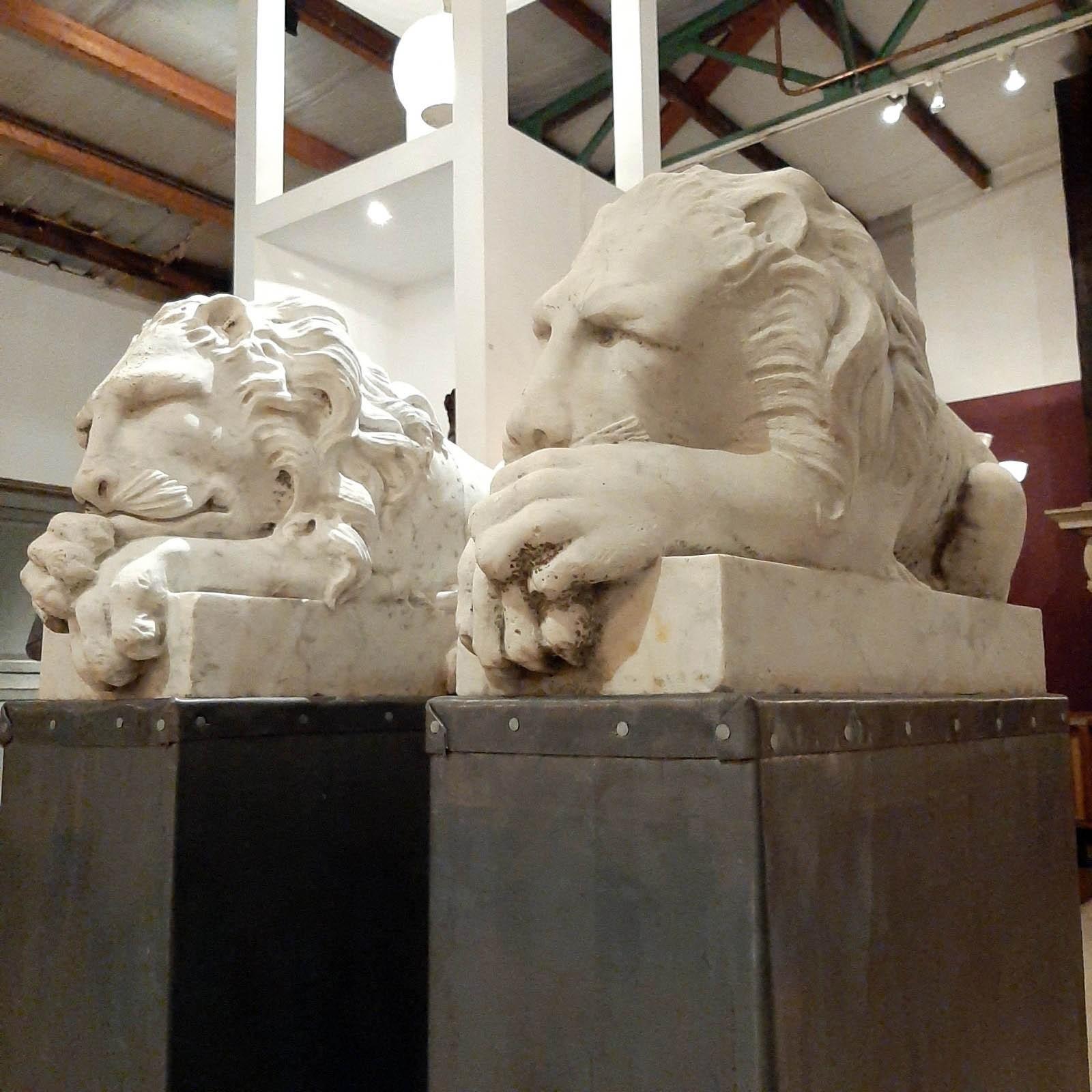 Prachtige marmeren antieke leeuwen