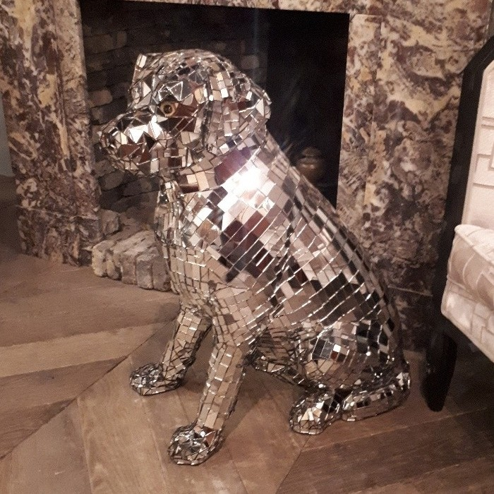Vintage Disco hond